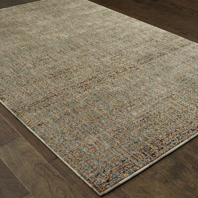 Bobby Blue/Gold Area Rug Rug Size: Rectangle 67 x 96