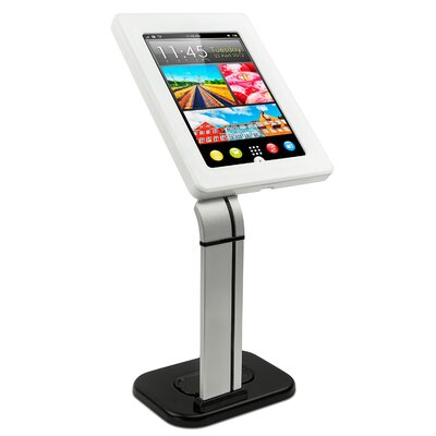 iPad Mounting System