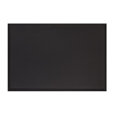 Anti-Fatigue Kitchen Mat Mat Size: Rectangle 15 x 25