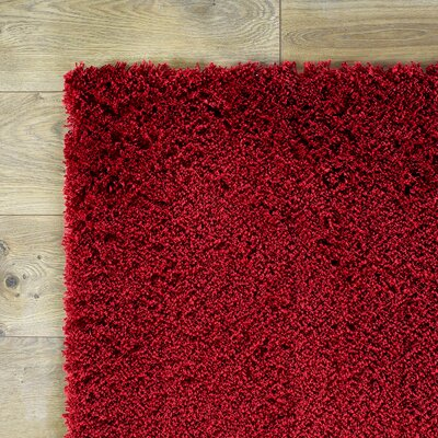 Shaggy Red Rug Rug Size: 23 x 39