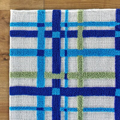 Birch Lane Kids Mad for Plaid Blue Rug