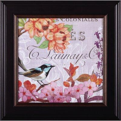 French Bird IV Jennifer Brinley Framed Graphic Art D45250