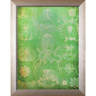 'Sea Life IV' by John Butler Framed Graphic Art H85277