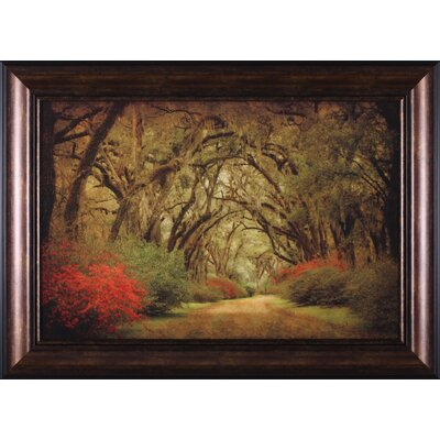 'Road Lined with Oaks and Flowers' Framed Painting Print