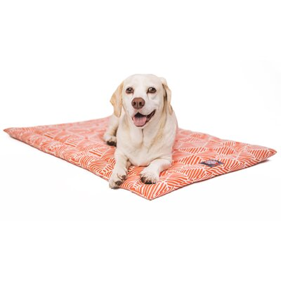 Charlie Salmon Dog Mat Size: 18 W x 24 D x 2 H, Color: Orange/White