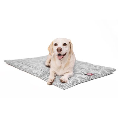 Charlie Salmon Dog Mat Size: 26 W x 42 D x 2 H, Color: Gray/White