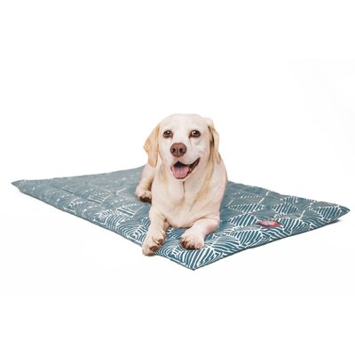 Charlie Salmon Dog Mat Size: 18 W x 24 D x 2 H, Color: Green/White