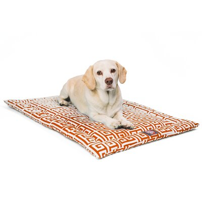Towers Citrus Dog Mat Size: 23 W x 36 D x 2 H, Color: Orange/White