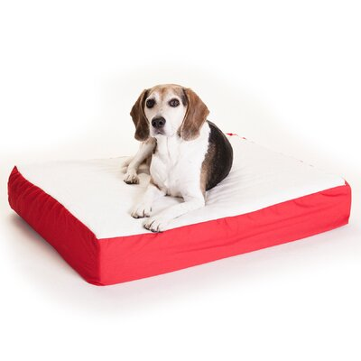 "Orthopedic Double Dog Pillow Color: Red, Size: Medium (34"" L x 24"" W)"