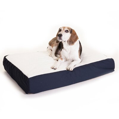 "Orthopedic Double Dog Pillow Color: Blue, Size: Medium (34"" L x 24"" W)"