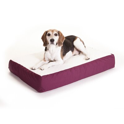 "Orthopedic Double Dog Pillow Color: Burgundy, Size: Medium (34"" L x 24"" W)"
