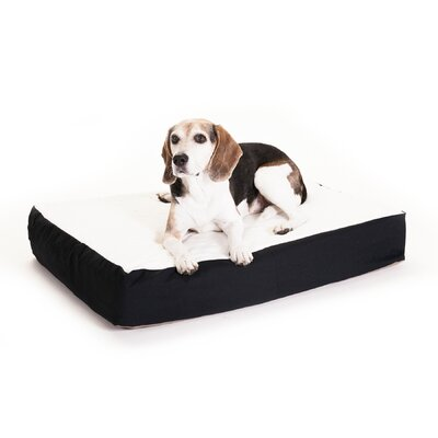 "Orthopedic Double Dog Pillow Color: Black, Size: Medium (34"" L x 24"" W)"