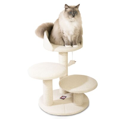 27 Bungalow Sherpa Cat Tree