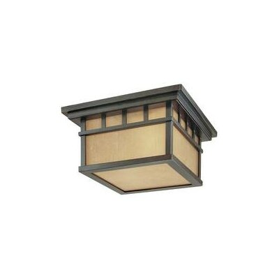 Teminot 2-Light Flush Mount