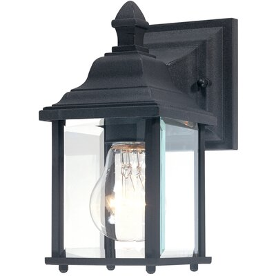 Charleston 1-Light Outdoor Wall Lantern Finish: Black