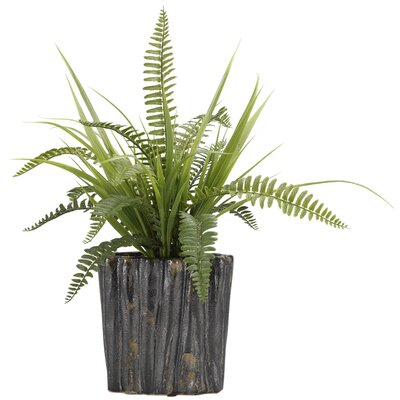 Boston Fern and Wild Grass Oval Ceramic Floor Foliage Plant in Planter