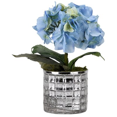 Hydrangea Floor Flowering Plant in Mirrored Glass Decorative Vase