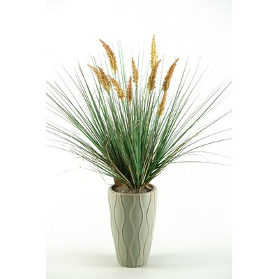 D & W Silks Onion Grass with Dogstail in Round Tepered Ceramic Decorative Vase at Sears.com