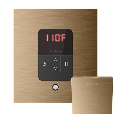 iTempo Square Thermostat Finish: Brushed Bronze