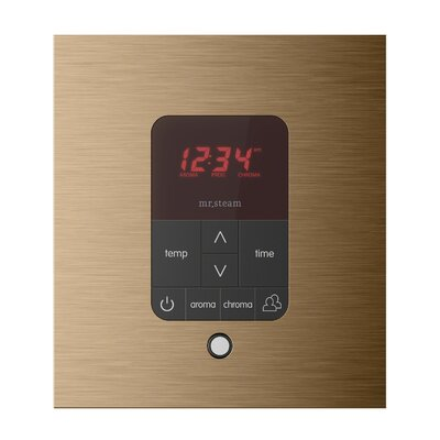iTempo Plus Shower Control Finish: Brushed Bronze