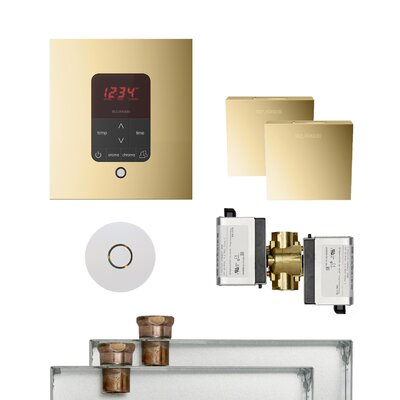 Butler Square Steam Thermostat, Timer, and Steamhead Finish: Polished Brass