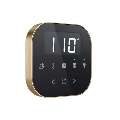 AirTempo Steam Shower Control Set Finish: Black/Brushed Bronze