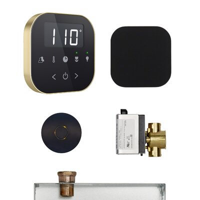 AirButler Steam Shower Package Finish: Black/Polished Brass