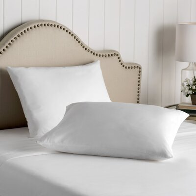 Wayfair Basics Cotton Zippered Pillow Protector Size: Standard / Queen