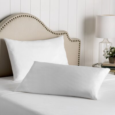 Wayfair Basics Cotton Zippered Pillow Protector Size: Queen