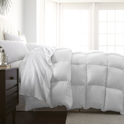Veedersburg Luxurious Premier Quality Down Alternative Comforter Color: White, Size: Full / Queen
