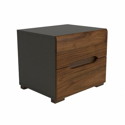 Elpasso 2 Drawer Nightstand Finish: Gray / Dark Brown