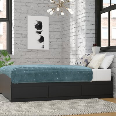 Wanda Storage Platform Bed Size: Double, Color: Black