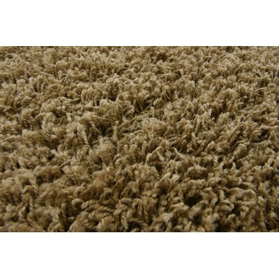 Katherin Brown Area Rug Rug Size: 211 x 31