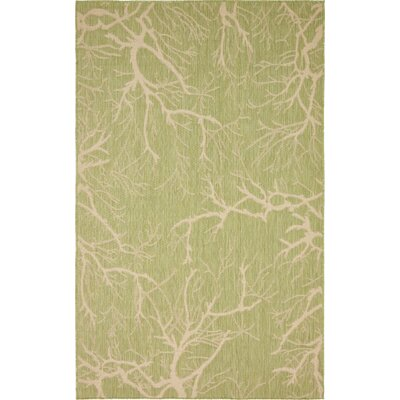 Green Outdoor Area Rug Rug Size: 5 x 8