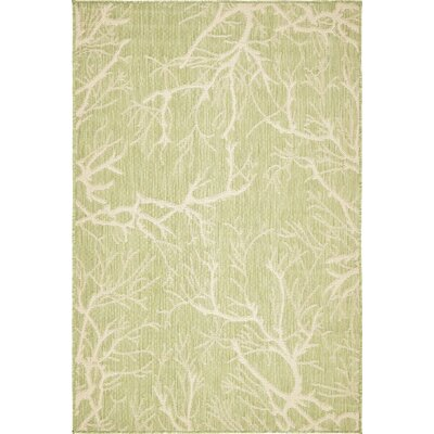 Sharolyn Green Outdoor Area Rug Rug Size: 4 x 6