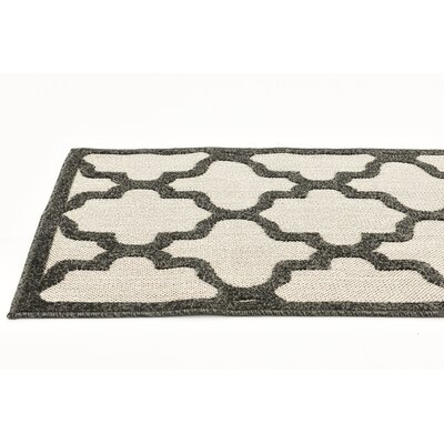 Agapius Black Indoor/Outdoor Area Rug Rug Size: Runner 2 x 6