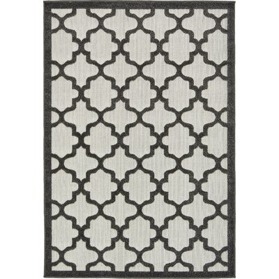 Agapius Black Indoor/Outdoor Area Rug Rug Size: Rectangle 4 x 6
