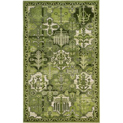 Irma Green Area Rug Rug Size: Rectangle 5 x 8