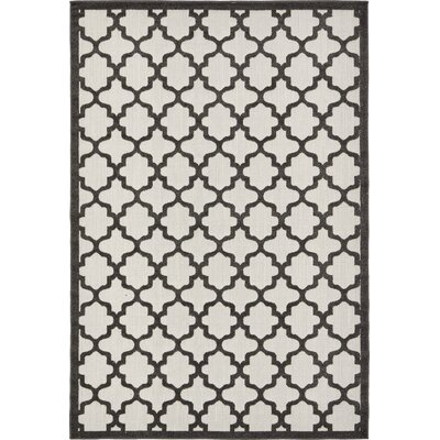 Agapius Black Indoor/Outdoor Area Rug Rug Size: Rectangle 6 x 9