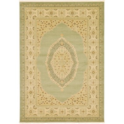 Fonciere Light Green Area Rug Rug Size: Rectangle 7 x 10