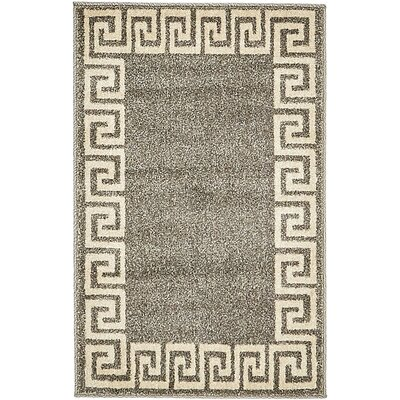 Cendrillon Gray Area Rug Rug Size: Rectangle 2 x 3