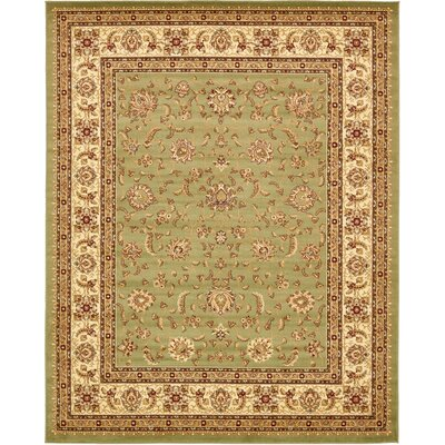 Niles Light Green Area Rug Rug Size: 8 x 10