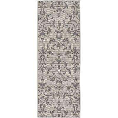 Boughton Monique Gray Outdoor Area Rug Rug Size: Runner 22 x 6