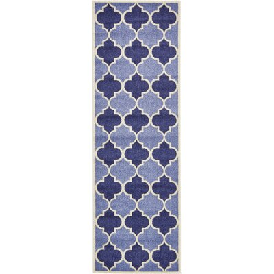 Emjay Light Blue Area Rug Rug Size: Runner 27 x 8