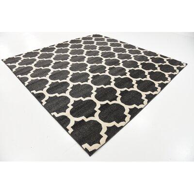 Emjay Black Area Rug Rug Size: Square 8'