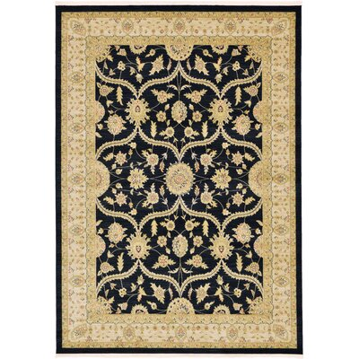 Britley Black Area Rug Rug Size: Rectangle 7 x 10