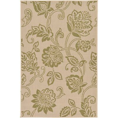 Malinda Light Green Outdoor Area Rug Rug Size: Rectangle 33 x 5