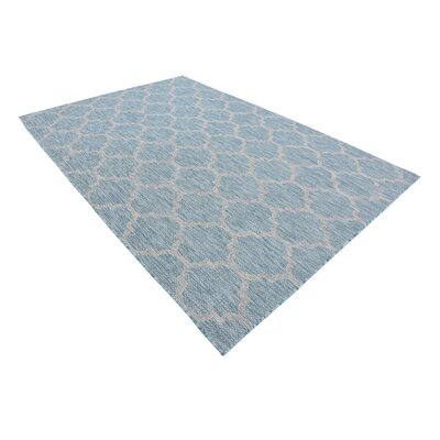 Stanton Aquamarine Outdoor Area Rug Rug Size: Rectangle 6 x 9