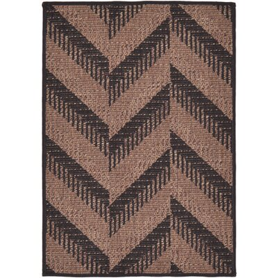 Jordan Brown Outdoor Area Rug Rug Size: Rectangle 22 x 3