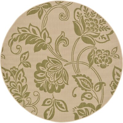 Malinda Light Green Outdoor Area Rug Rug Size: Round 6